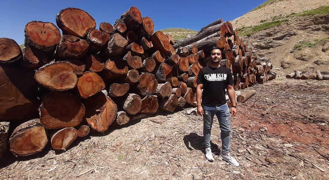 خشک کردن اسلب چوب