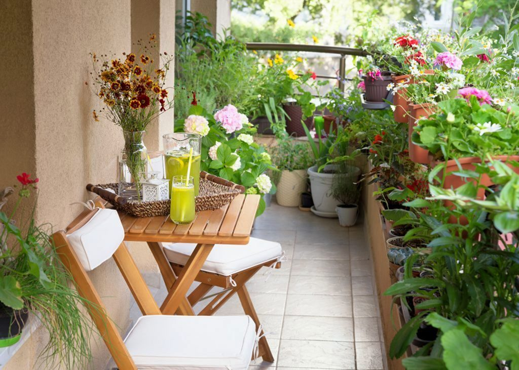 باغچه آپارتمانی کوچک
