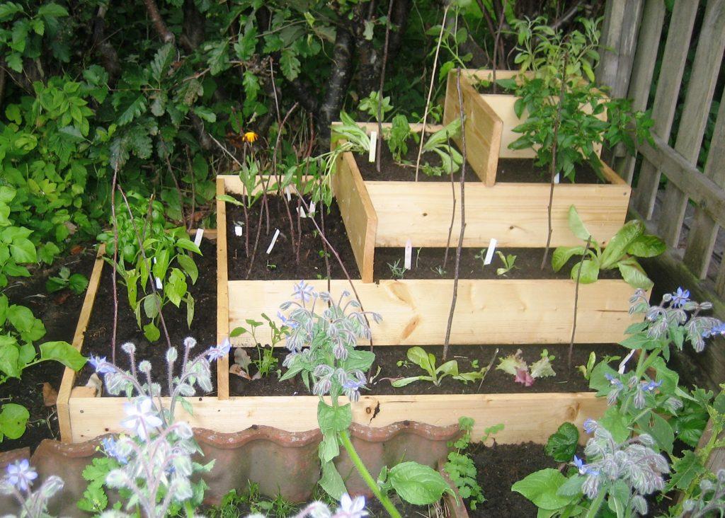 باغچه آپارتمانی