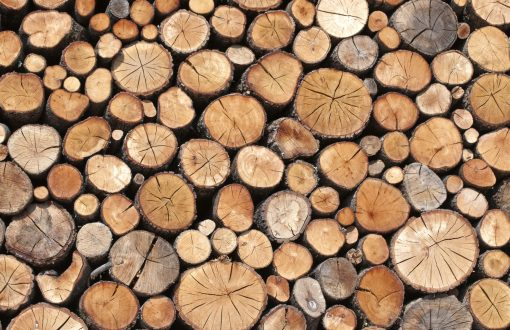 مشخصات چوب خوب برای نجاری