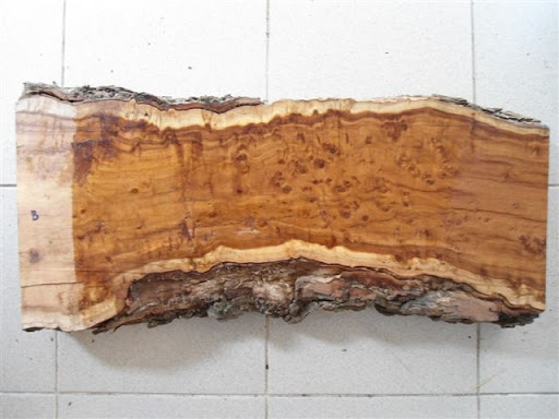 چوب درخت عناب