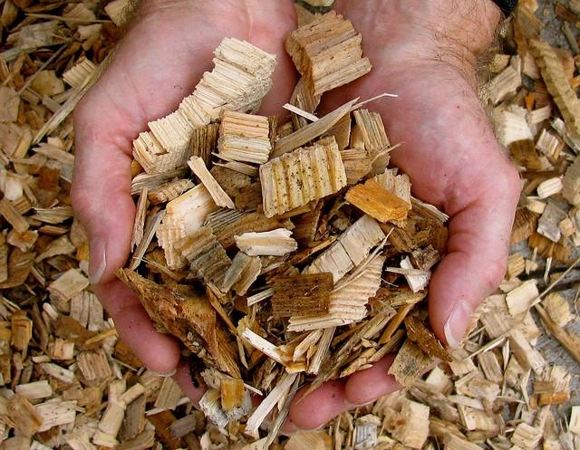 پولسازی از ضایعات چوبی